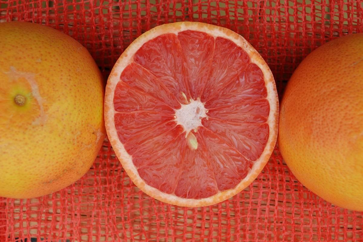 grapefruit-3